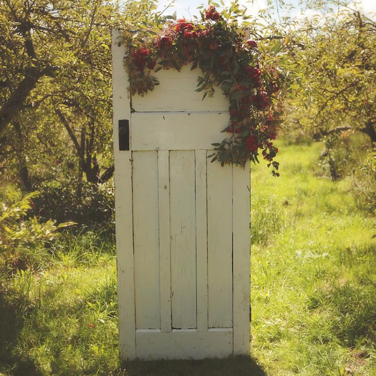 Rustic Vintage Free Standing Door